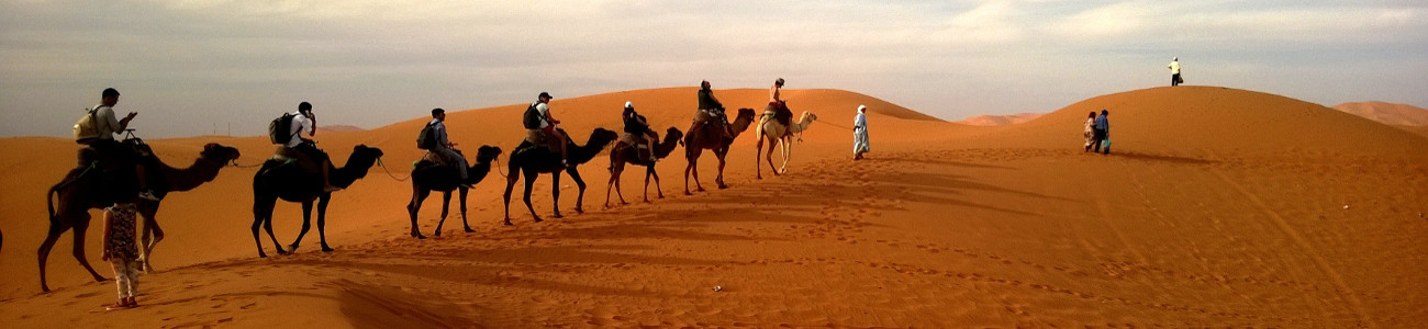 Erg Chebbi Desert - Sunset camel ride